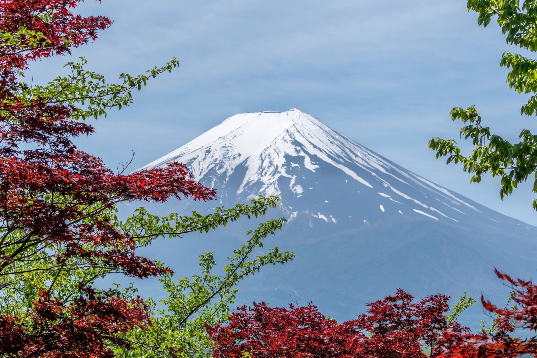 Flight Deal Round Trip From San Francisco Area to Tokyo #sanfrancisco #tokyo #2weeks